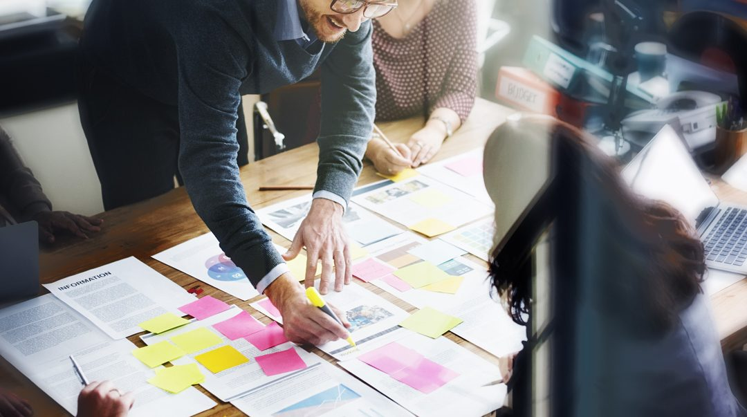 How Do I Organize Business Processes in Developing a Startup?